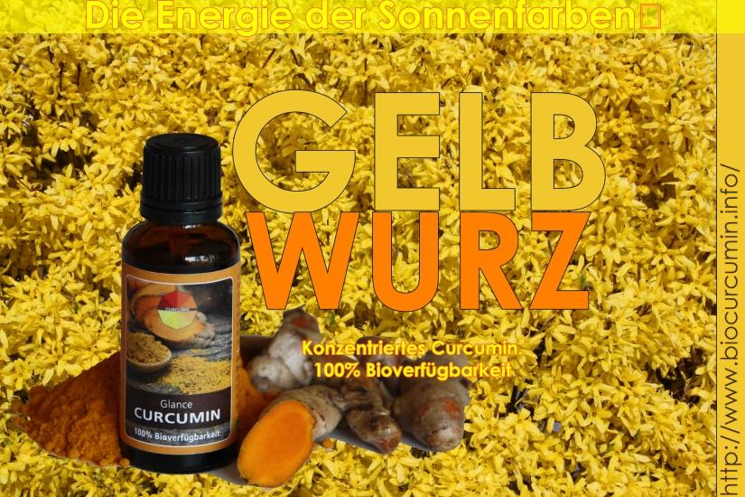 yellow glance curcumin